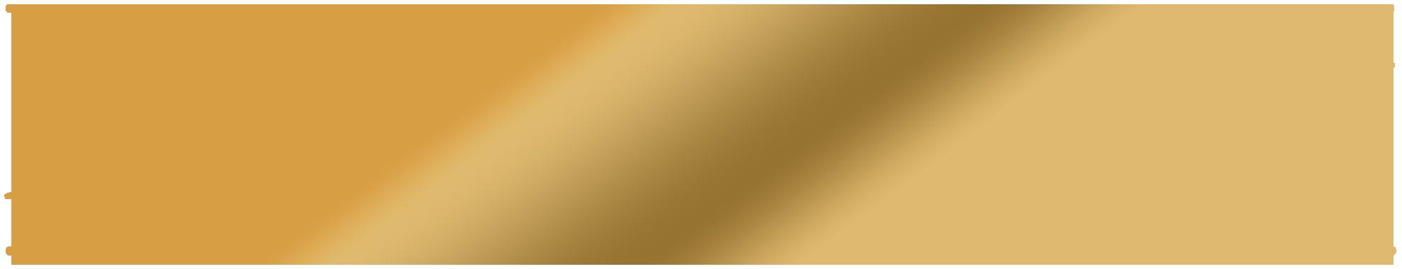 maxgravity-logo goud